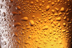 Frosty beer glass. Close up shot of frosty beer glass Stock Image