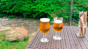 Frosty beer ready to sip by bubbling brook Stock Photo