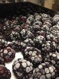 Frosty Blackberries Stock Photo