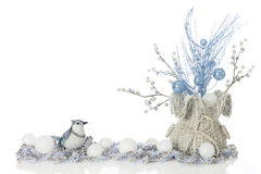 Frosty Blue Jay Royalty Free Stock Images