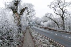 Frosty Cheshire, Reino Unido foto de stock royalty free