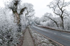 Frosty Cheshire,UK. Cheshire is a county in northwest England royalty free stock photo