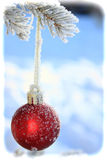 Frosty Christmas Bulb Royalty Free Stock Photography