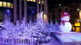 Frosty Christmas in Louvain La Neuve. Frosty and snowy christmas in Louvain La Neuve, Belgium, Europe Stock Photo