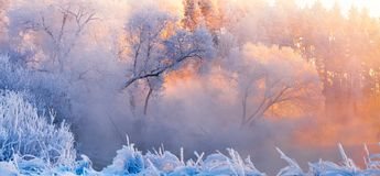 Frosty Christmas morning. Winter landscape with frosty trees lit by the morning sun. Winter panorama in orange blue colors. Winter royalty free stock photos