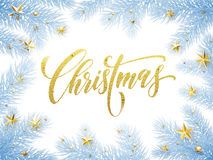 Frosty Christmas tree branches with golden stars Royalty Free Stock Images