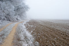 Frosty countryside landscape stock image