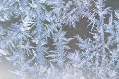 Frosty Crystal Formations Stock Photography
