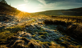 Frosty Cumbria-platteland stock foto
