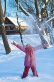 Frosty day Stock Photos