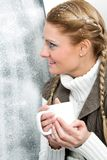 On frosty day Stock Images