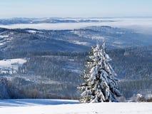 Frosty Day in schlesischem Beskid in Polen lizenzfreie stockfotografie
