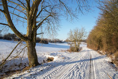 Frosty Day. Winter landscape with fields and meadows / Frosty Day Royalty Free Stock Image