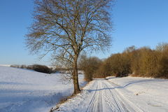 Frosty Day. Winter landscape with fields and meadows / Frosty Day Royalty Free Stock Photos