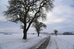 Frosty Day. Winter landscape with fields and meadows / Frosty Day Royalty Free Stock Photo