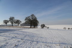 Frosty Day. Winter landscape with fields and meadows / Frosty Day Royalty Free Stock Photography