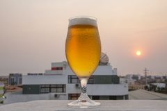 Frosty and detailed beer glass. With blurred background with sunset royalty free stock photos