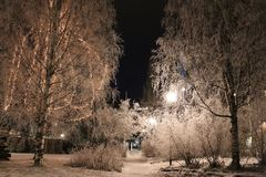 Frosty fairytale landscape. The City Park in Luleå has been transformed into a frosty fairytale landscape Stock Photo
