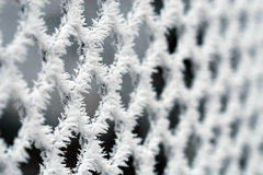 Frosty fence - winter texture Stock Image