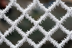 Frosty fence - winter texture Stock Photography