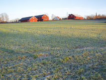Frosty field and farm Royalty Free Stock Photos