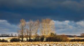 Frosty field on Funen, Denmark Stock Photo