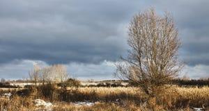 Frosty field on Funen, Denmark Stock Image