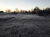 Frosty field. Frosty morning in our town Royalty Free Stock Images