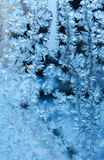 Frosty fine  pattern Stock Image
