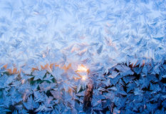 Frosty fine pattern of nature. Frosty natural pattern at a winter window glass Royalty Free Stock Photos