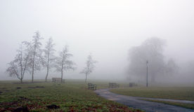Frosty and Foggy Diss Mere Park. Beginning of winter in Diss Park Norfolk East Anglia England United Kingdom. This is a wide view of the park showing the grass royalty free stock image