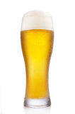 Frosty glass of beer. Frosty glass of light beer isolated on a white background Stock Photos