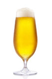 Frosty glass glass of beer. Isolated on a white background Stock Images