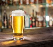 Frosty glass of light beer on the bar counter. Stock Photos