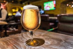 Frosty glass of light beer on the bar counter. Pub interior at the background stock image