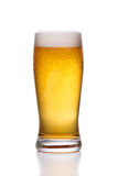Frosty glass of light beer with foam on white Royalty Free Stock Image