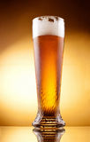 Frosty glass of light beer with froth Stock Images