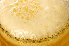 Frosty glass of light beer Stock Image