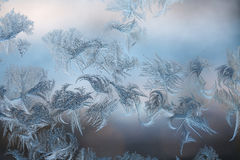 Frosty ice patterns on window Royalty Free Stock Image