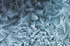 Frosty pattern. Frosty intricate pattern on a glass window Royalty Free Stock Photos