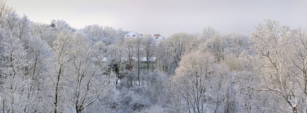 Frosty january day Royalty Free Stock Image