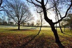 Frosty Landscape Lizenzfreies Stockfoto