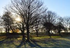 Frosty Landscape Lizenzfreie Stockfotografie