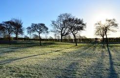 Frosty Landscape Stockbilder