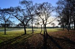 Frosty Landscape Images stock