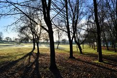 Frosty Landscape Lizenzfreie Stockfotos