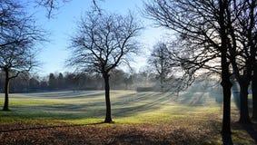 Frosty Landscape Lizenzfreie Stockbilder