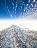 Frosty landscape, the top view Stock Images