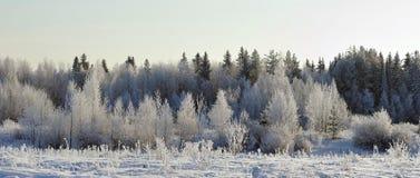 Frosty landscape Royalty Free Stock Photo