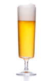 Frosty light beer with foam on white Stock Image